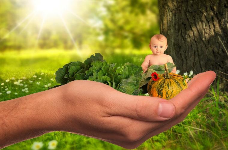 Alimentos saludables para el niño pequeño de 1 a 3 años