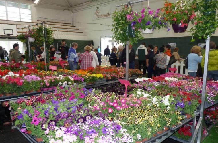Información sobre la jardinería al alcance de tus manos