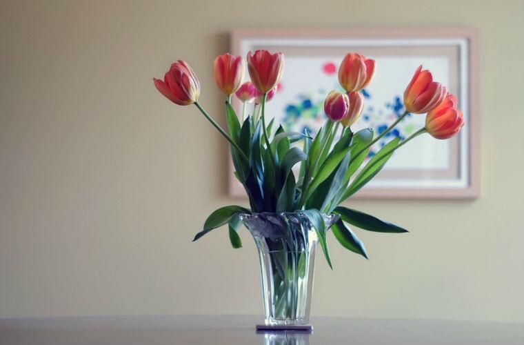 decorar tu casa con flores y plantas
