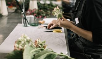 Cómo decorar tu hogar con plantas