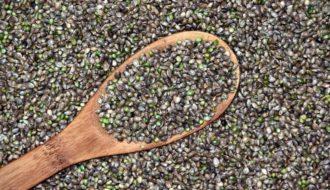 auge compra semillas marihuana durante confinamiento